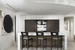 Sieron Wet Bar
